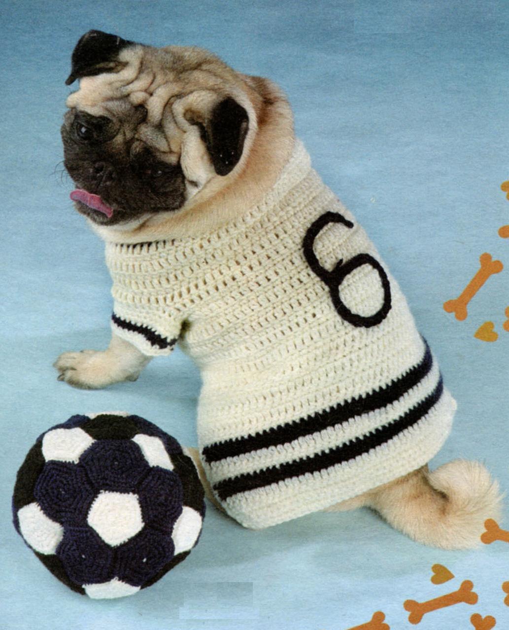 Кофточка и мячик для собаки вязаные крючком