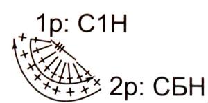Схема объёмного элемента