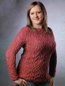 1422977468_brusnichnyj-pulover
