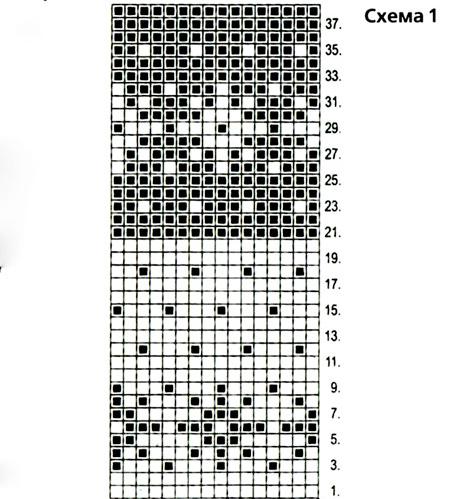 Схема рисунка енота